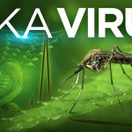 zika-virus-web